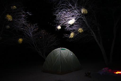 Acampada nocturna en Kalahari
