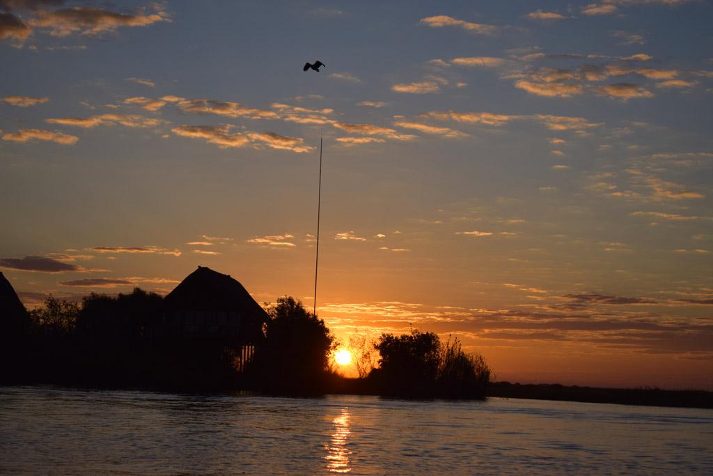 Atardecer en Chobe River Cruise.