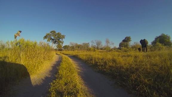 Caminos de Mboma Island.
